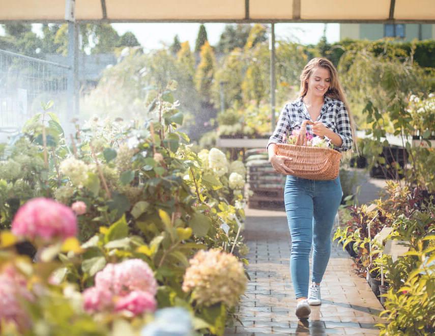 Blumen und Pflanzen in der Gartenwelt Oppl kaufen